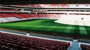 Estadio_de_la_Luz_Benfica-9